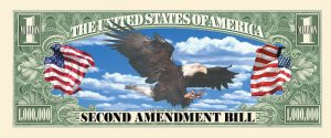 2nd Ammendment One Million Dollar Bill