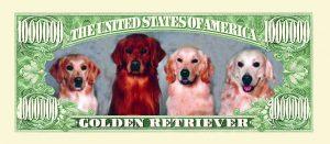 Golden Retriever One Million Dollar Bill