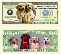 Golden Retriever One Million Dollar Bill
