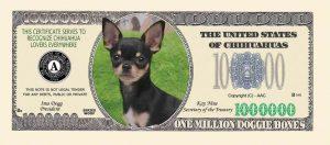 Chihuahua One Million Dollar Bill