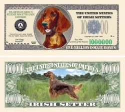 IRISH SETTER MILLION DOLLAR BILL