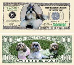 SHIH-TZU MILLION DOLLAR BILL