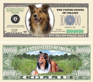 COLLIE MILLION DOLLAR BILL