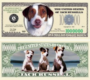 Cocker Spaniel TERRIER DOG MILLION DOLLAR BILL