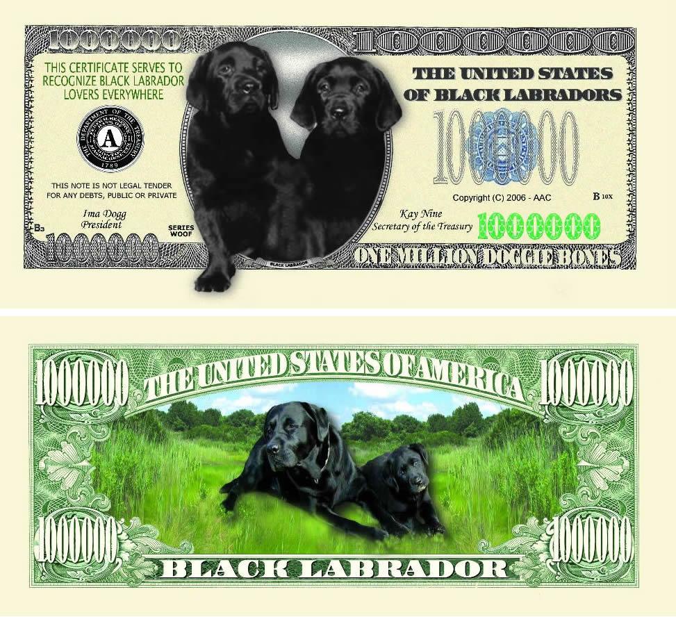 Black Labrador One Million Dollar Bill