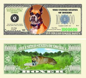 Boxer One Million Dollar Bill