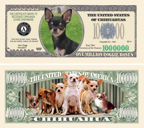 Chihuahua One Million Dollar Bill