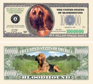 Bloodhound One Million Dollar Bill