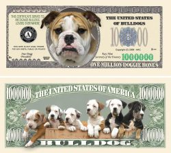 BULLDOG MILLION DOLLAR BILL