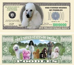 POODLE MILLION DOLLAR BILL