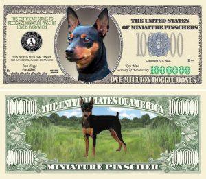 MINIATURE PINSCHER DOG MILLION DOLLAR BILL