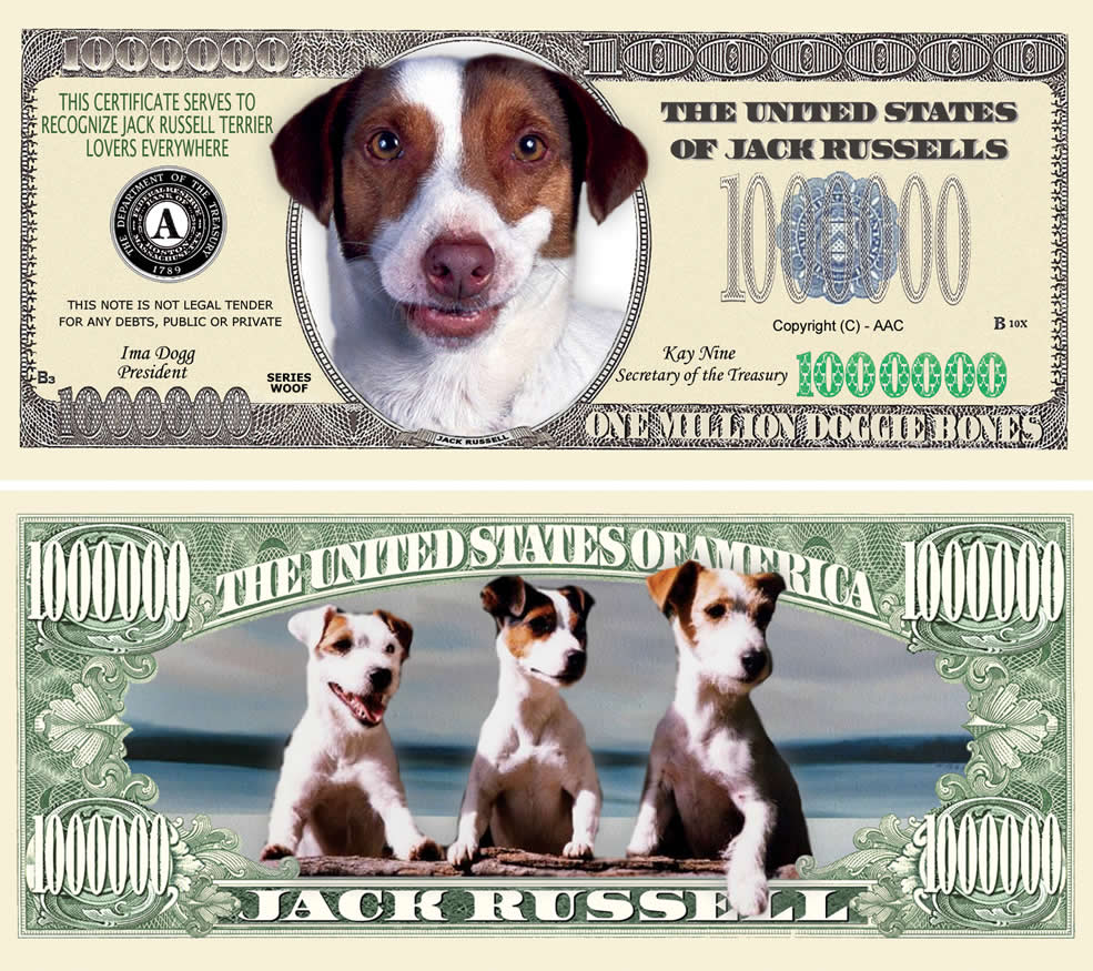 Cocker Spaniel TERRIER DOG MILLION DOLLAR BILL