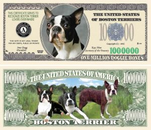 BOSTON TERRIER MILLION DOLLAR BILL