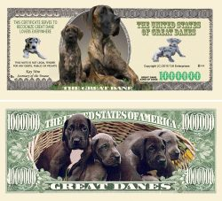 Great Dane Million Dollar Bill