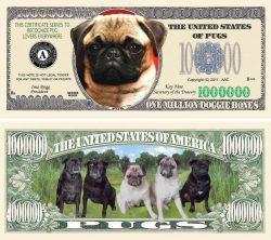 Pug Dog Million Dollar Bill