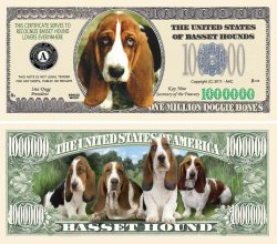 Basset Hound Million Dollar Bill